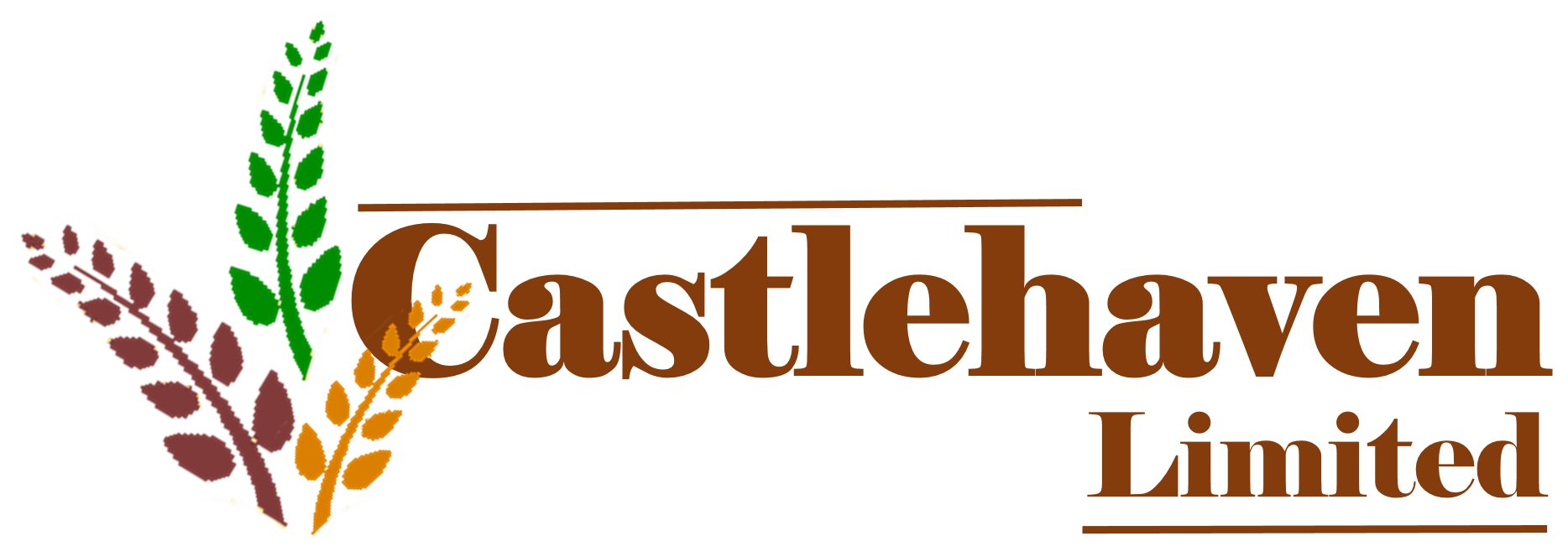 www.castlehavenltd.co.uk